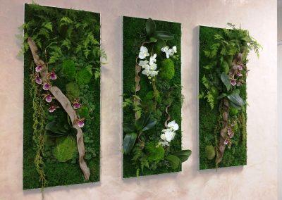 Mur végétal - Plantes artificielles et fleurs