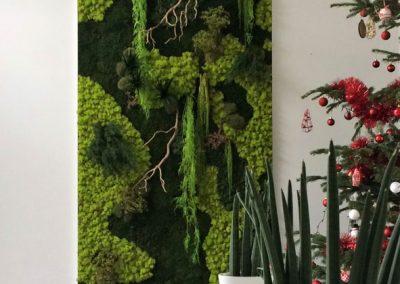 Mur végétal - Plantes artificielles et stabilisées