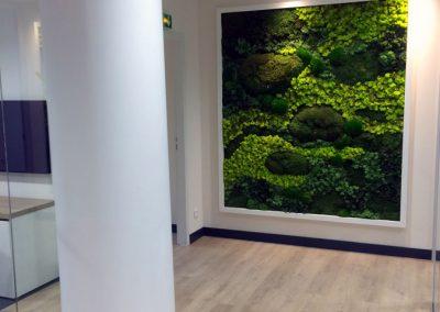 Mur végétal - Mousse et lichen stabilisés
