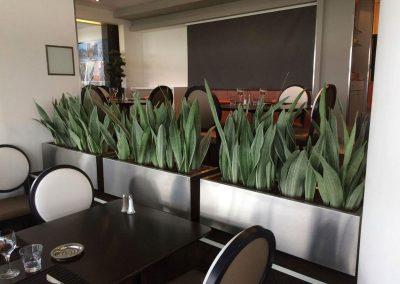 Décoration végétale - Plantes naturelles