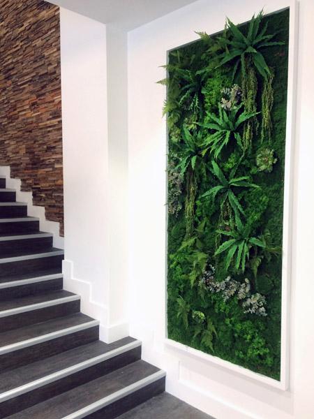 Décoration murs végétaux